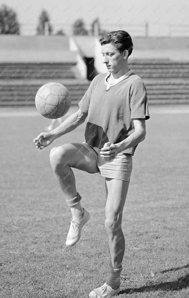 Sport - Labdarúgás - Labdarúgó