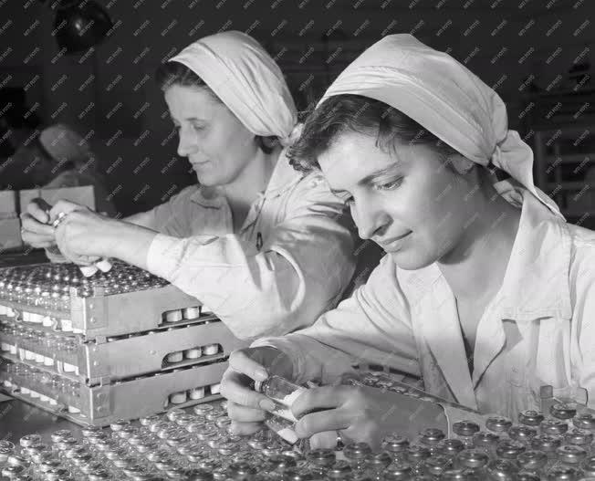 Ipar - Egyesült Gyógyszer- és Tápszergyár