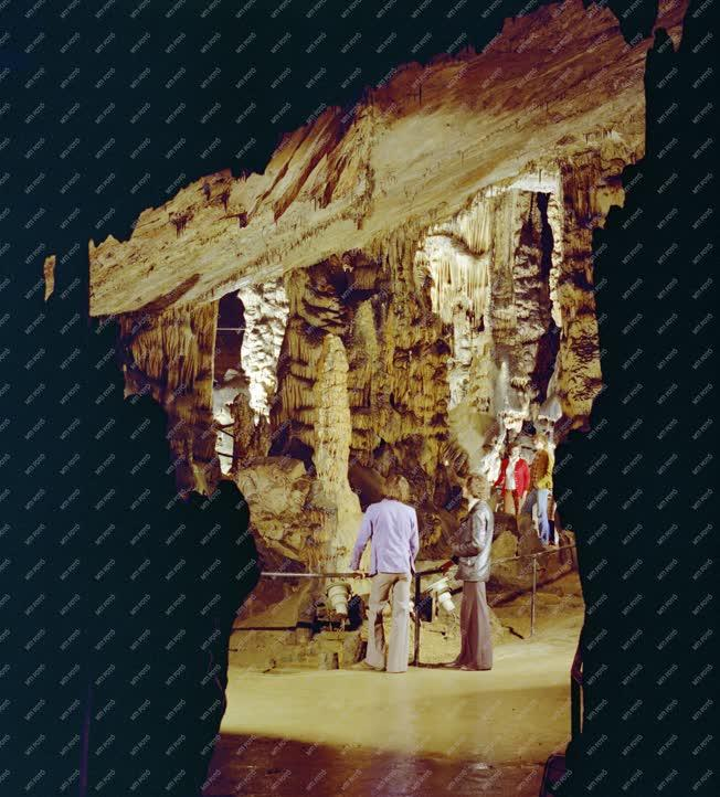 Természet - Az Aggteleki-cseppkőbarlang