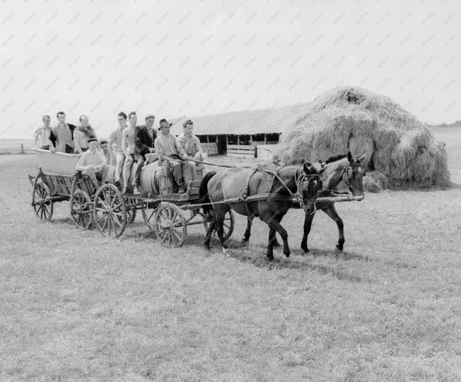 Mezőgazdaság - Életképek a Túrkevei Búzakalász TSZ-ben