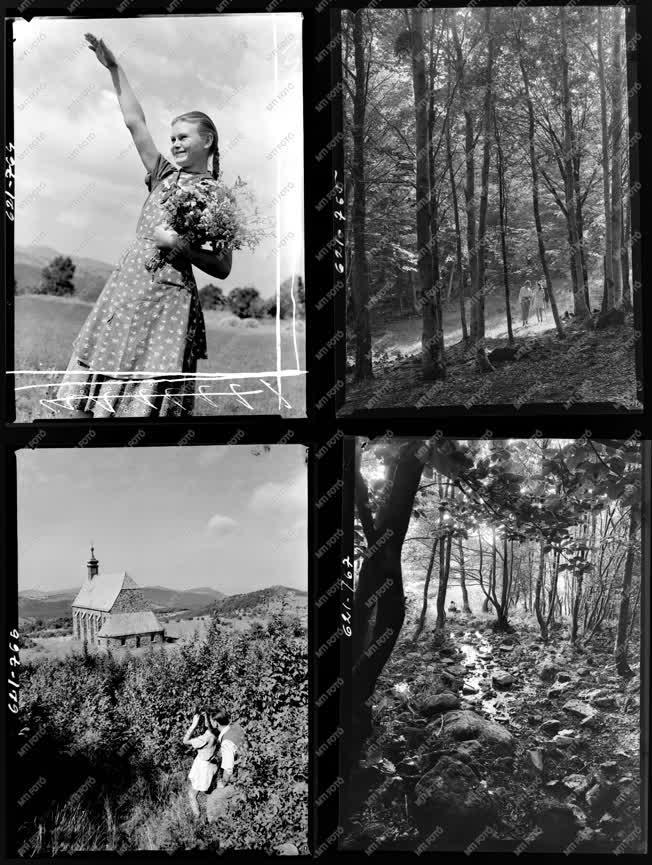 Életkép-Természet - Ibusz album - Mátraszentimre