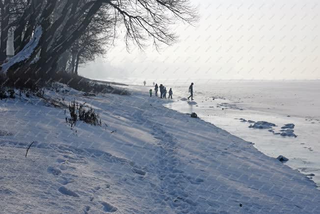 Természet - Zebegény - Téli Duna-part