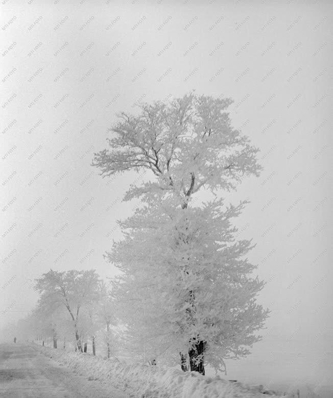 Tél - Ismétlődő havazás