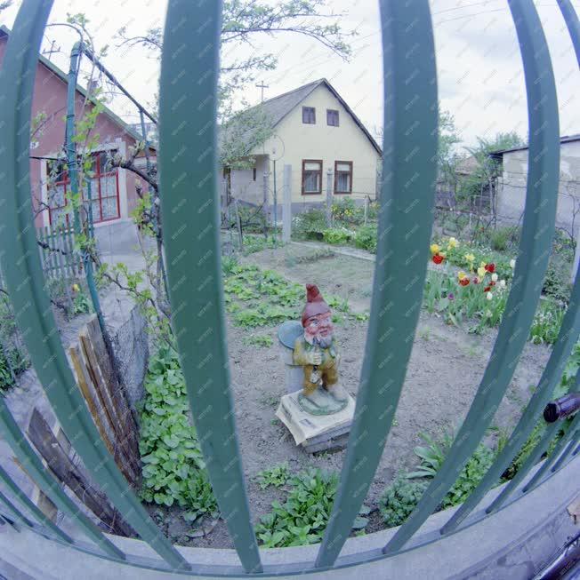 Városkép-életkép - Kerti törpe egy szekszárdi udvarban