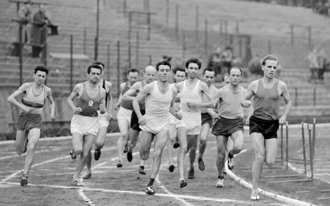 Sport - Újpest Dózsa atlétikai verseny