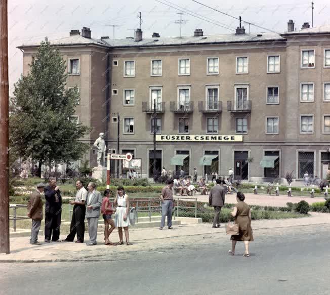 Városkép - Komló - A Kökönyös-Dávidföld városrész főtere