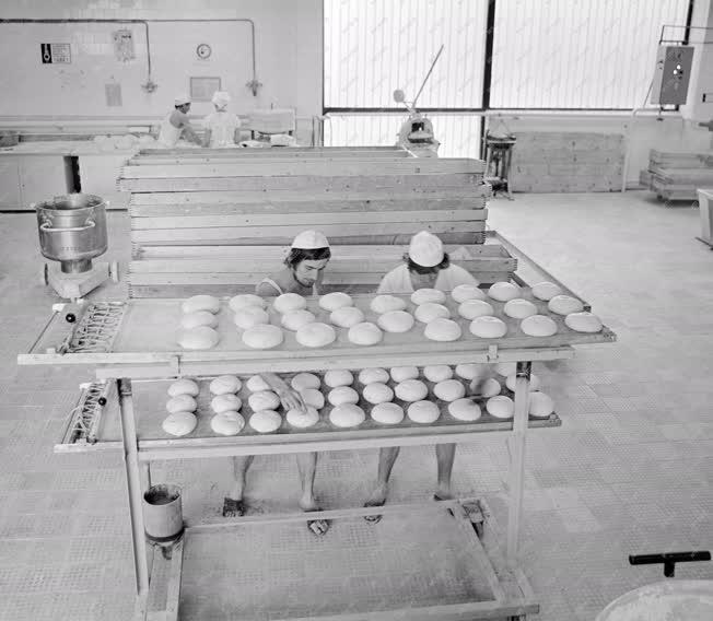 Ipar - Élelmiszeripar - Új sütőüzem Dabason