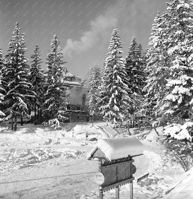 Tájak - Természet - Tél a Tátrában