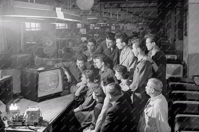 Média - Televízió közvetítés