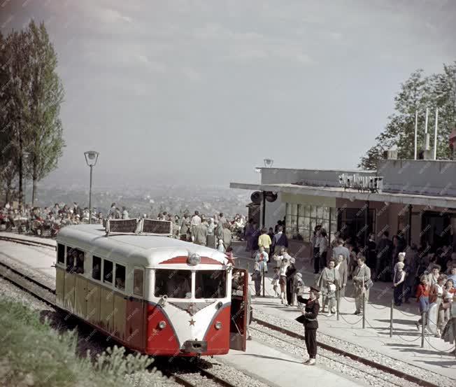 Közlekedés - Úttörővasút a Budai-hegységben