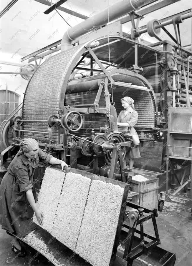 Ipar - Budafoki Gyufagyár