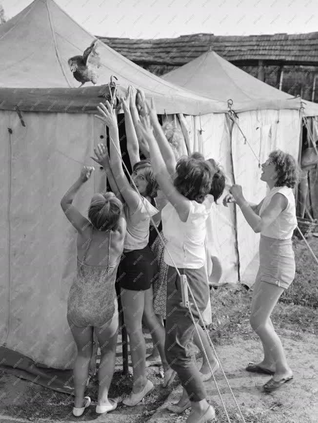 Vakáció - Ifjúsági tábor a Lajtahansági Állami Gazdaságban
