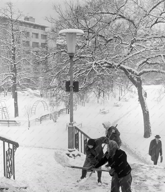 Városkép-életkép - Időjárás - A havas Mechwart liget