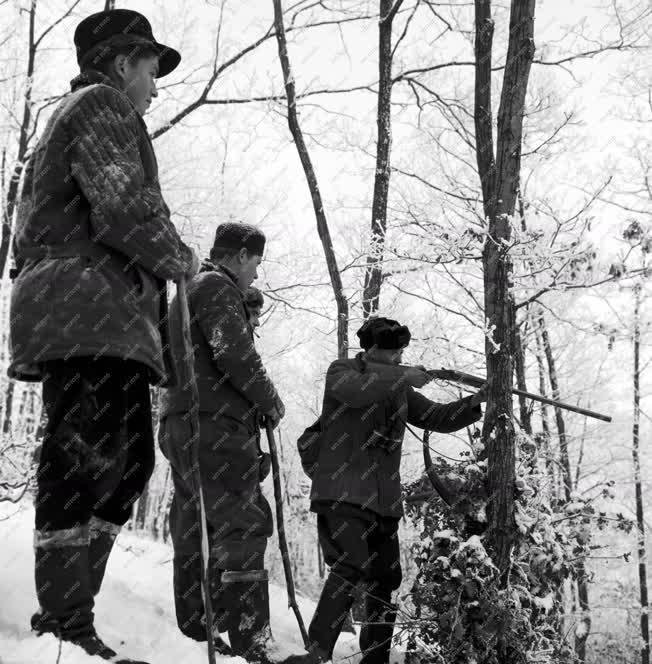 Szabadidő - Belga vadászok Magyarországon