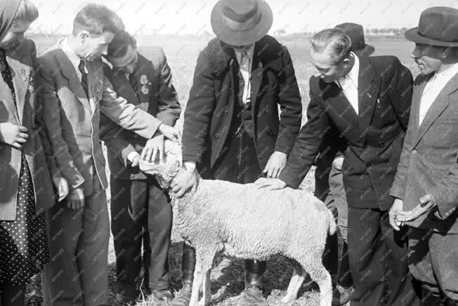 Belpolitika - Parasztküldöttek vidéki látogatása