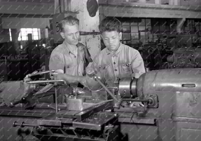 Oktatás - Koreai diákok nyári gyakorlata az Esztergomi Szeszámgépgyárban