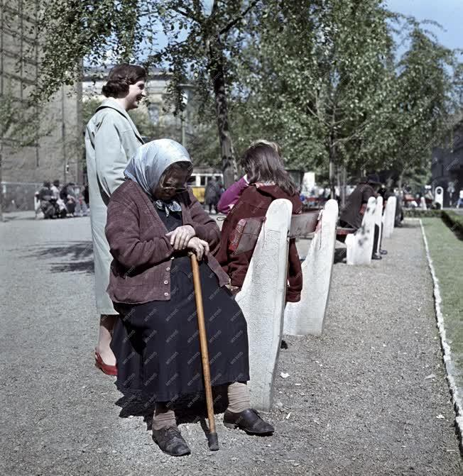 Életkép - Kálvin téri park