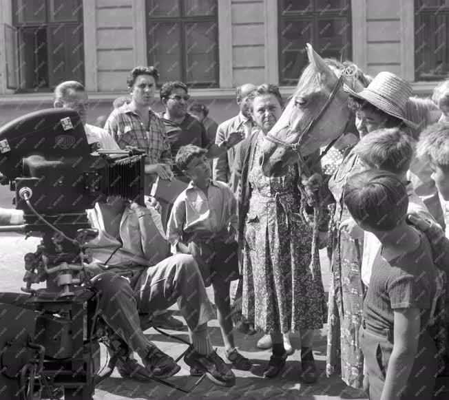 Kultúra - Film - Csutak és a szürke ló