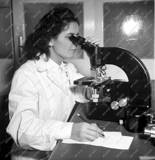 Ipar - A Textilipari Kutató Intézet megnyitása