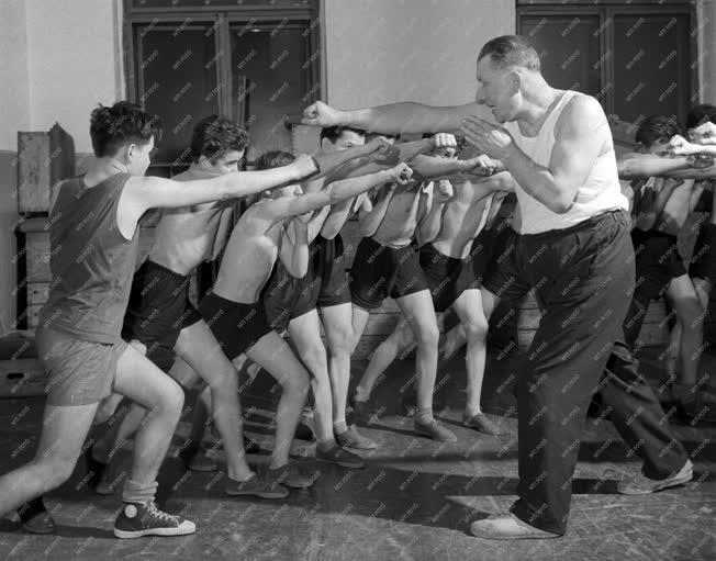 Sport - Ökölvívó edzés