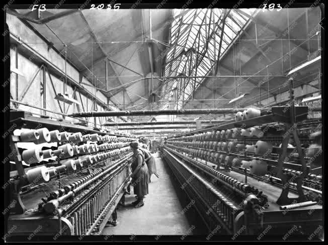 Ipar - Textilipar - Hazai Fésűsfonó