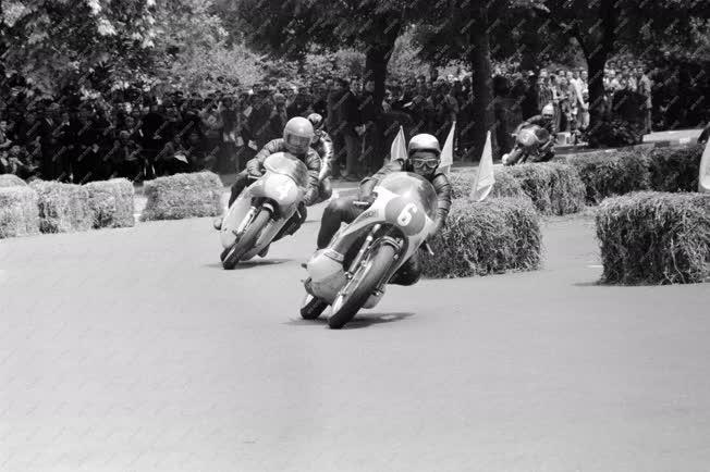 Sport - Motorverseny a Népligetben