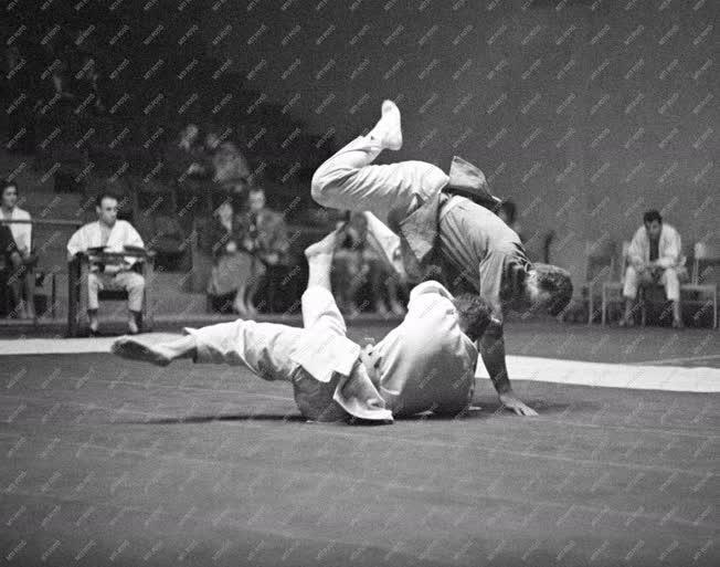 Sport - 1961. évi országos cselgáncsbajnokság