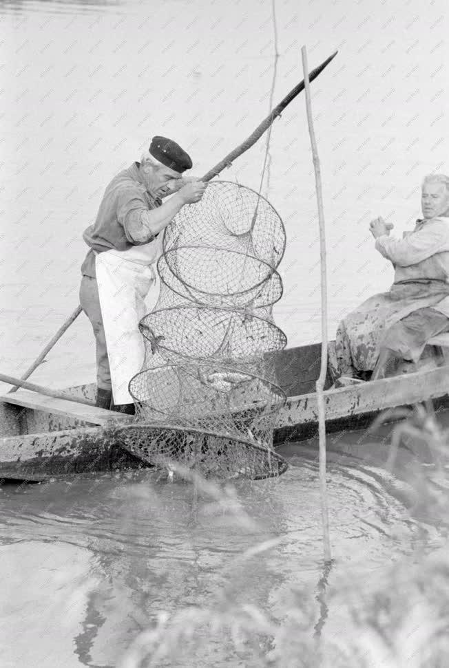 Mezőgazdaság - Halászat - Halász a Sión