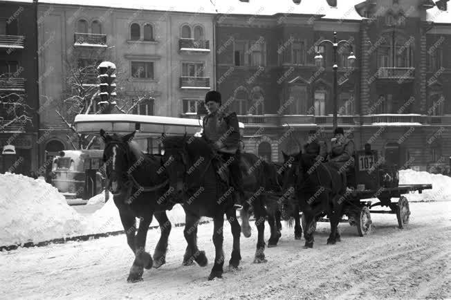 Városkép-életkép - Lovas kocsi a havas utcán