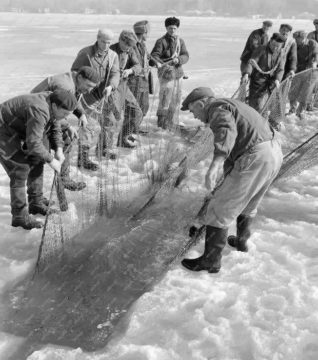 Halászat - Jéghalászat