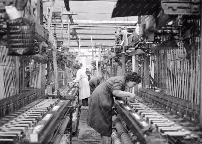 Ipar - Textilipar - A Lőrinci Szalagszövő- és Csipkegyár