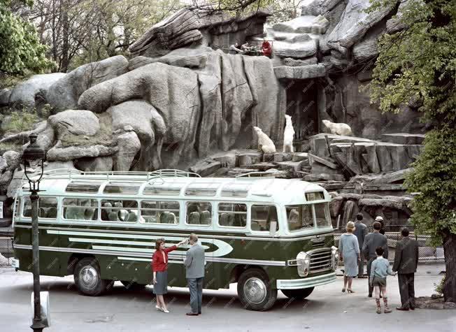 Új IKARUS autóbusz
