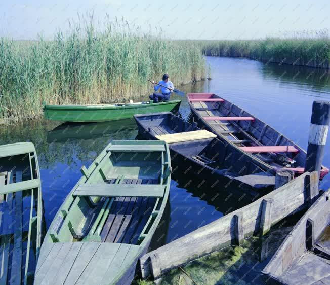 Életkép - Természet - Halászat - Horgászkikötő