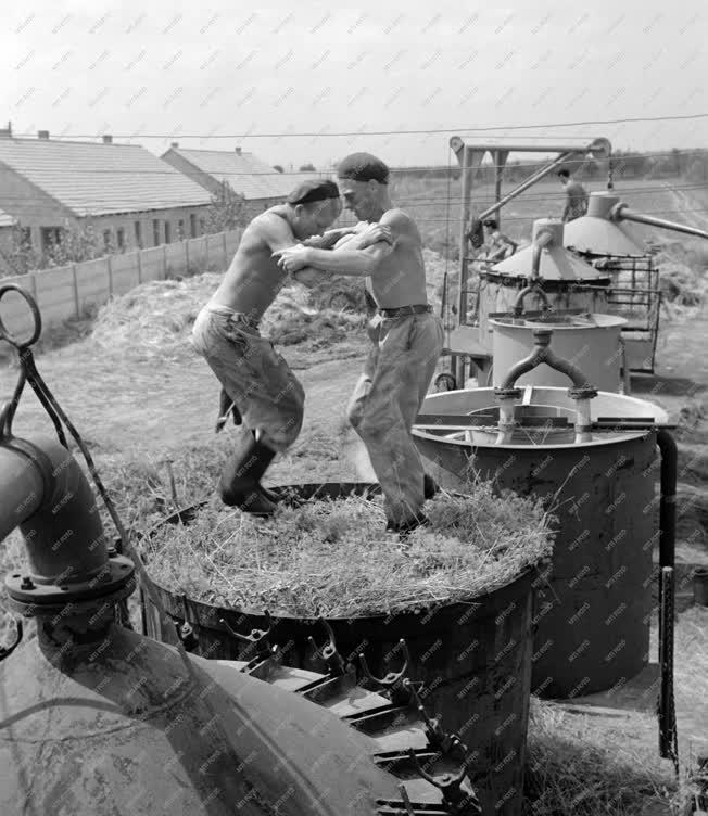 Vegyipar - Az lllóolaj- és Vegyészeti Gyár Mohácson