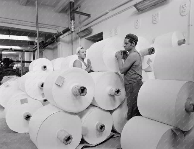 Ipar - Papíripar - Diósgyőri Papírgyár