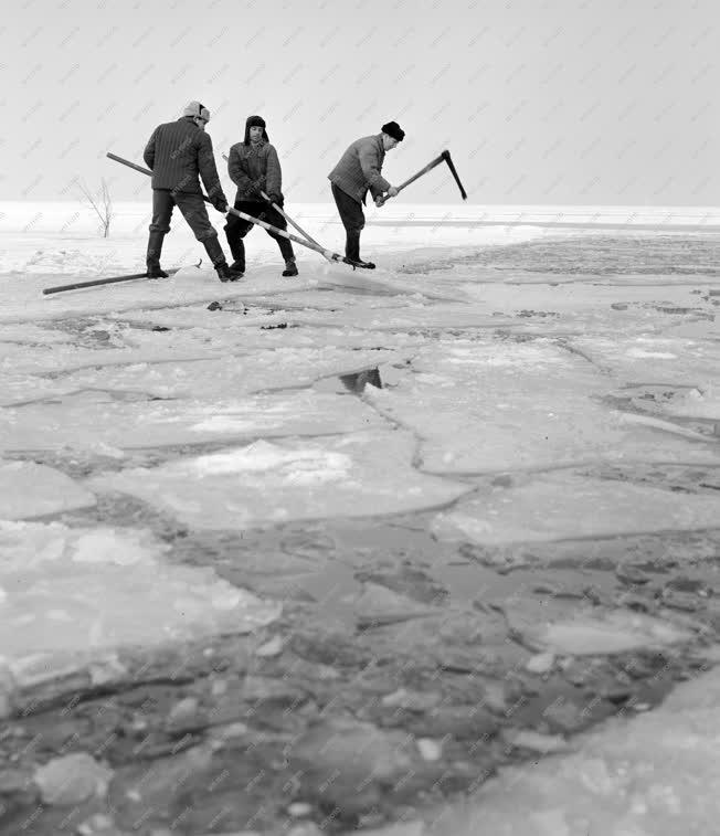 Halászat - Jégvágás a Balatonon
