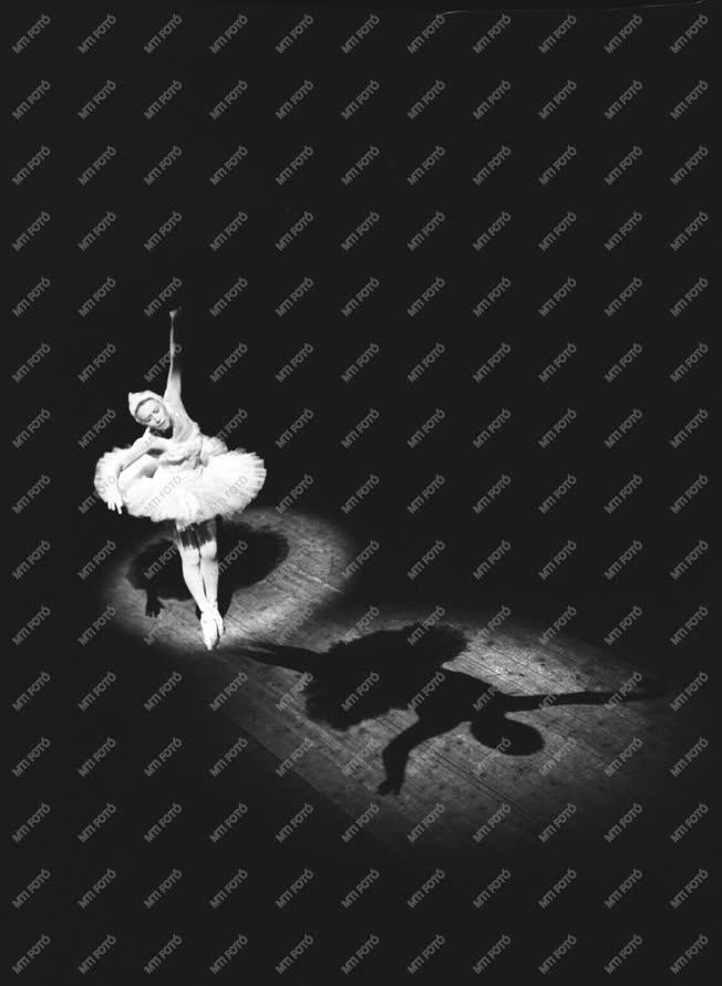 Balett - A Moszkvai Nagyszínház balettegyüttese Budapesten