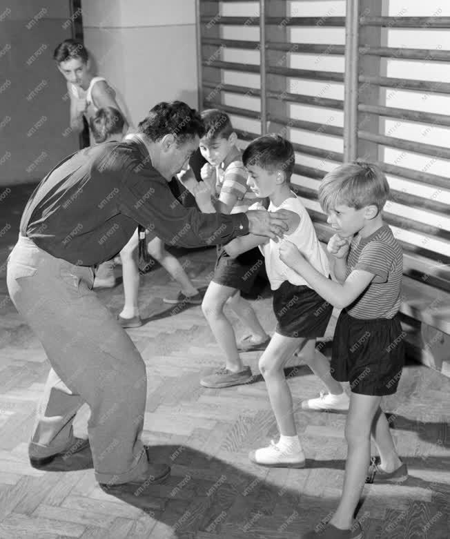 Sport - Ökölvívó iskola