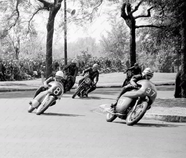 Sport - Gyorsasági motorverseny a Népligetben