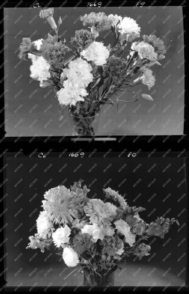 Természet - Kereskedelem - Virágok