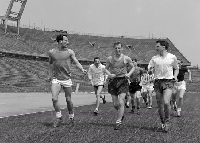 Sport - Labdarúgás - Wales labdarúgócsapata Budapesten
