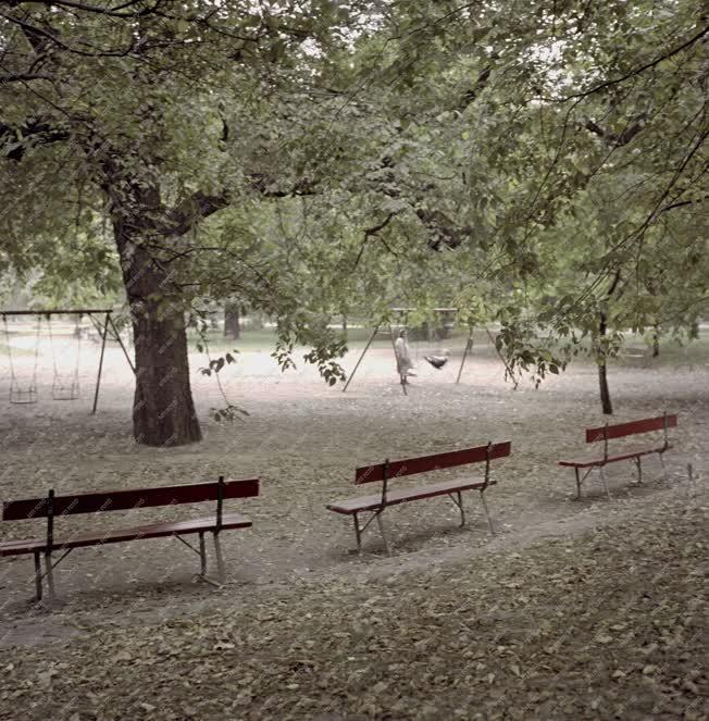 Pesti pillanatok - Ősz a játszótéren