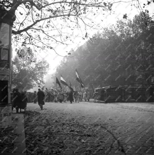 Ötvenhat emléke - Tüntetők