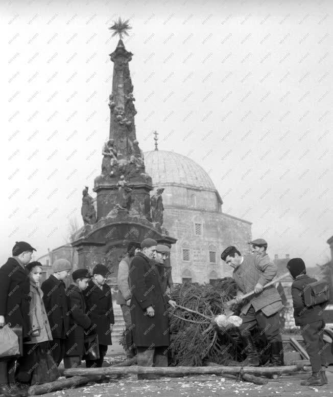 Ünnep - Városkép - Karácsonyfát állítanak a pécsi Széchenyi téren