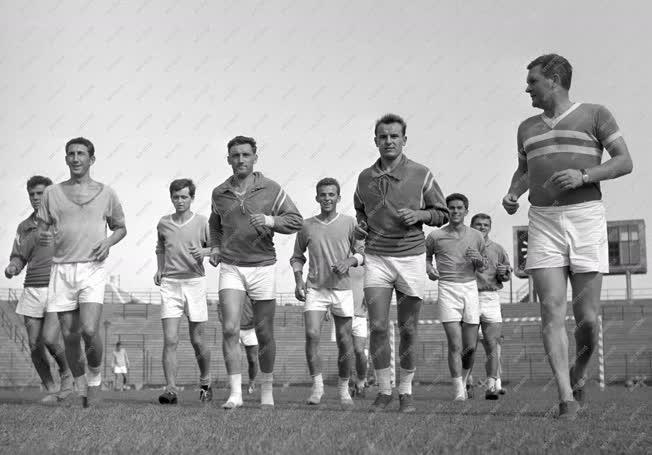 Sport - Labdarúgás - Edzések az Újpesti Dózsa csapatánál