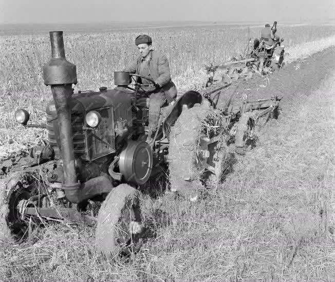 Mezőgazdaság - A nagyberki Kaposvölgye Tsz