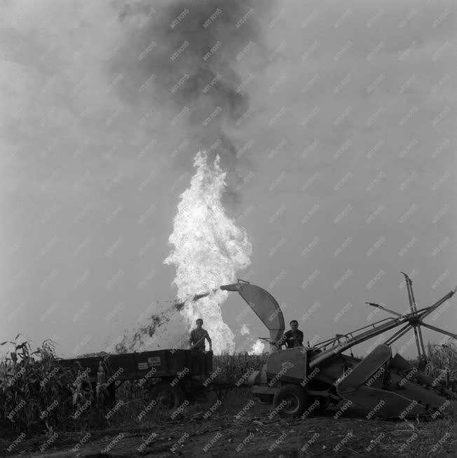 Energia - A nagyhegyesi gázkitörés