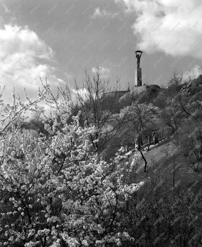 A Gellért-hegyi emlékmű