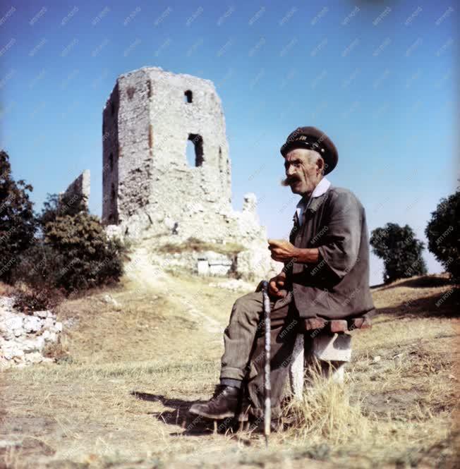 Magyar várak - A cseszneki várőr