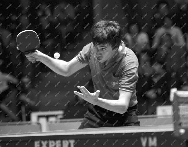 Sport - Asztalitenisz - BEK elődöntő